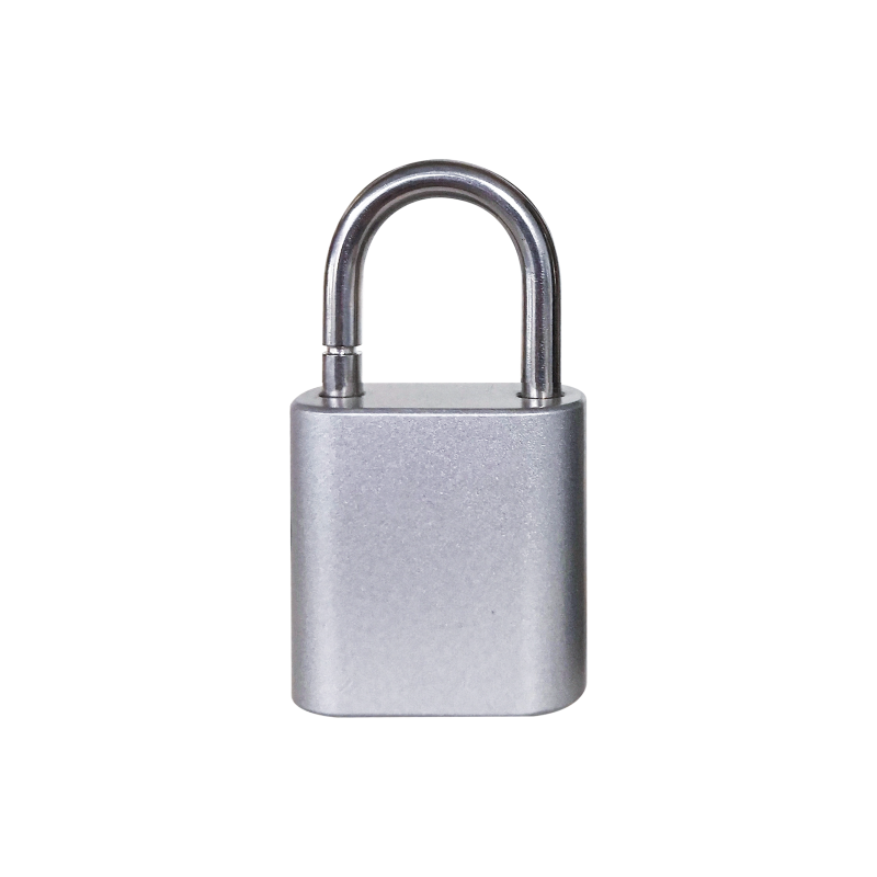 ZHLHGF8300-GSX智能挂锁