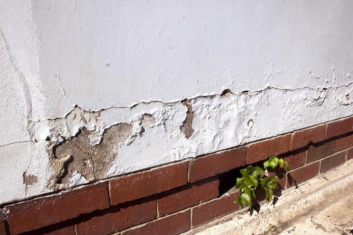 因潮气上升导致油漆开裂和剥落