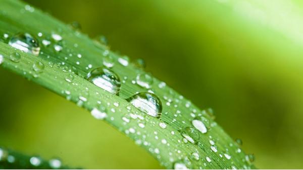 潮湿多雨天气,人都要发霉了,那些电气设备该怎么办?