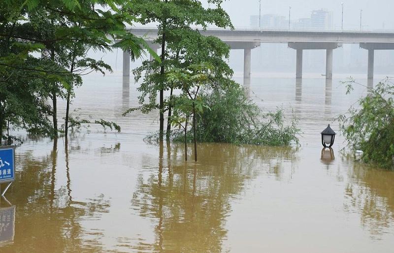 2020年,我国南方遭遇了历史罕见的大洪灾