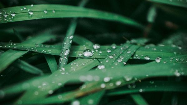 除湿机用着方便,保养和维护起来也方便吗?