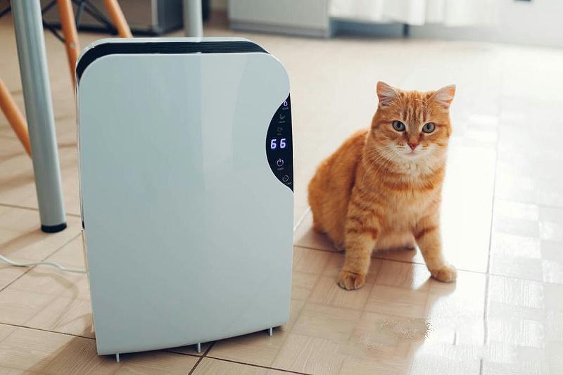 家用除湿机一般都是制冷的